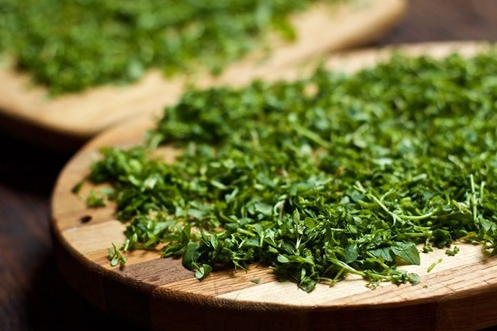 How to Make Chickweed Salve – LearningHerbs
