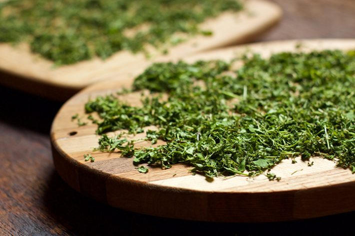Chickweed Salve Recipe